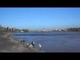Neva river 20.04.2014 Нева.Рыбачим все!