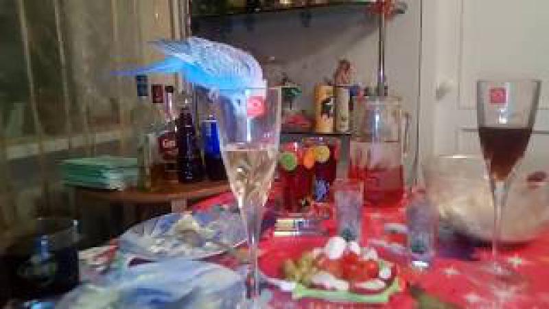Волнистый попугай пьет Кока-колу вместо шампанского | Прикол видео 2018