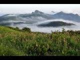 J.B.Loeillet (John) Sonata d-moll for flute &amp Basso Continuo op.3 №2 Part3 Largo