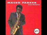 Maceo Parker Let's Get It On