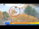 Солдат КНДР сумел бежать через границу с Южной Кореей