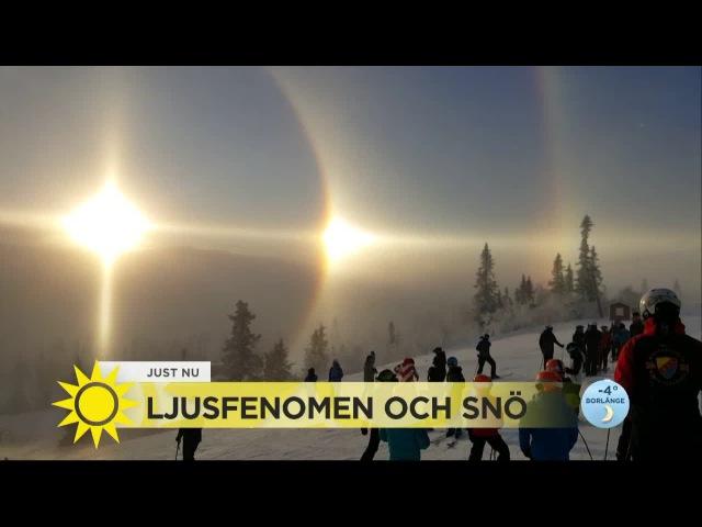 Ljusfenomenet Halo - När iskristaller leker med solen - Nyhetsmorgon (TV4)