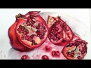 Live Pomegranate in Watercolor Painting Tutorial 12 30 pm Friday Dec 1