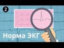 Норма ЭКГ Все интервалы и зубцы p QRS T PR ST