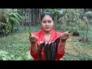 Awesome Cooking Grilled Fish Sauce Mango Recipe - Grilled Fish Recipes - Village Food Factory