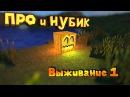 Про и Нубик выживают вместе Minecraft 1 12 LPS 1