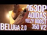 ОБЗОР ADIDAS YEEZY BOOST 350 V2 BELUGA 2.0
