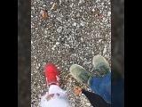 evelina_krasivaya video