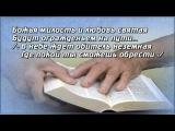 Светлана Малова Божья милость
