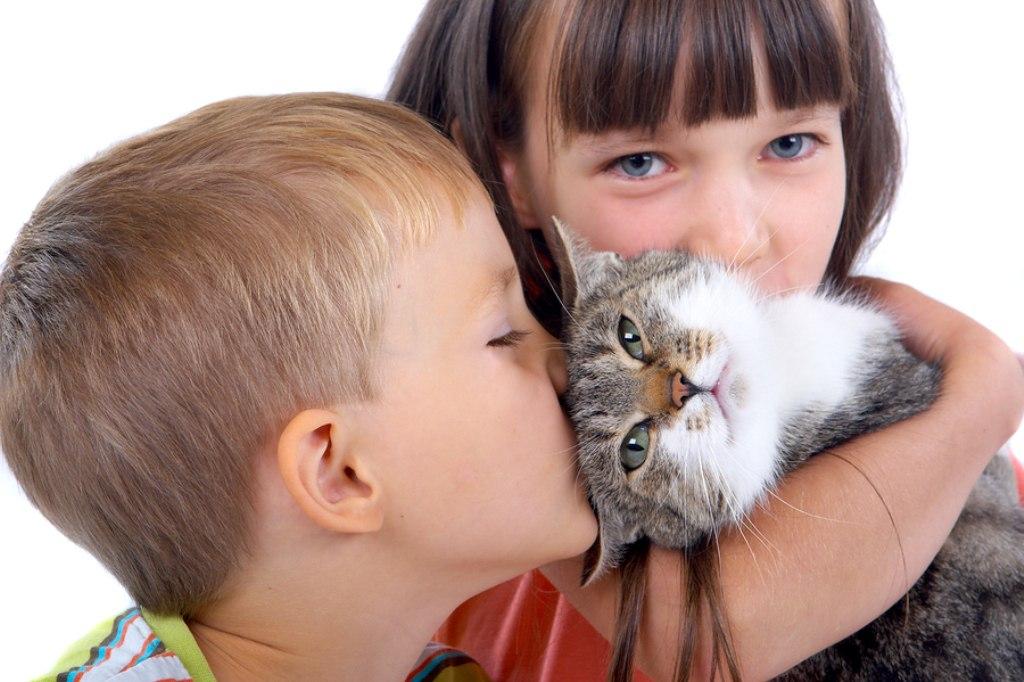 Девушка зарабатывает не малые деньги на собственном коте