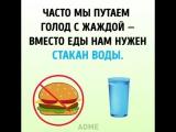 Как похудеть за 10 дней источник www.adme.ru