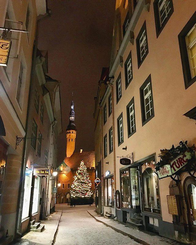 Мария Тогидная | Tallinn (Таллин)