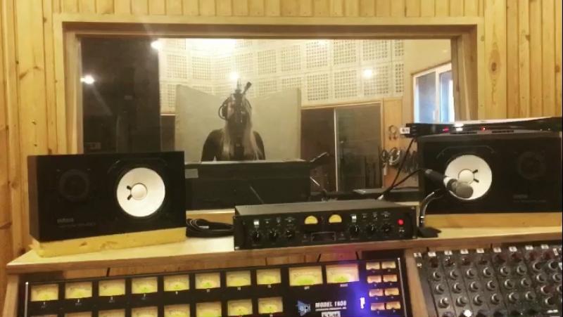 Fox in oil 👑 Studio time. Recording singing 🎤