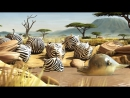 ROLLIN SAFARI - The Waterhole - Official Trailer FMX 2013