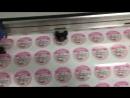 Печать наклеек на плёнке Orajet для @capriz_34 🍨🍨🍨