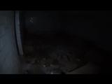 Влад Резнов - Нашли логово наркоманов в бункере. Побег от охраны