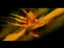 Despina Vandi - Gia (ver2) [1080p]