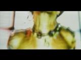 Tommy Lee feat. Lil Kim, Fred Durst, Pamela Anderson - Get Naked.avi