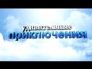 Приключения 11а в школе №6 г. Ипатово