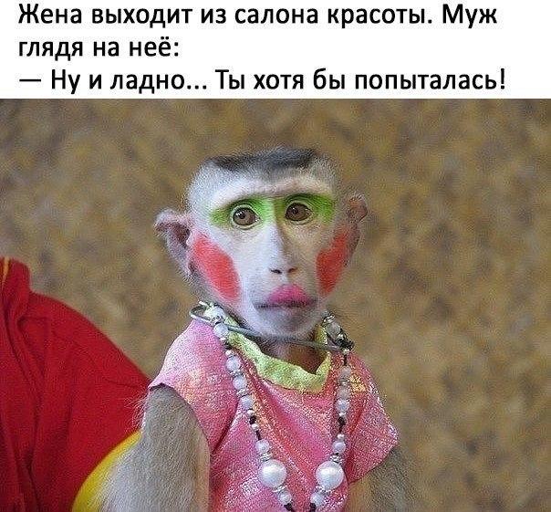 Фото №456239475 со страницы Юлии Гуровой