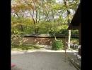 Kawai Shrine, Kyoto, Daimon no Omi, Funori