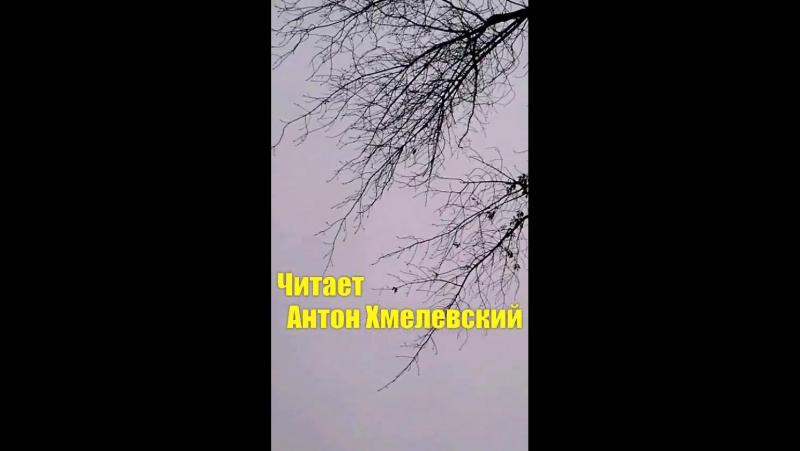 Из романа Доктор Живаго -