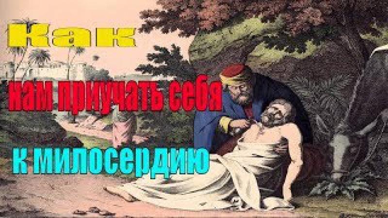 Как нам приучать себя к милосердию? - Пестов Николай Евграфович