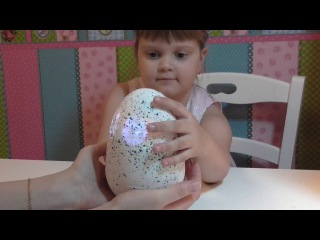 Открываем яйцо Hatching Pet EGG