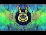 DJ Mandraks &amp Teken - Jupiter BTBR001