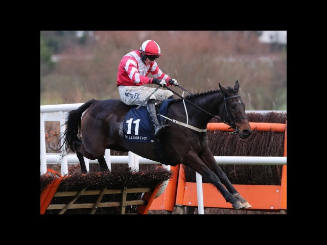 Total Recall dominates at Leopardstown