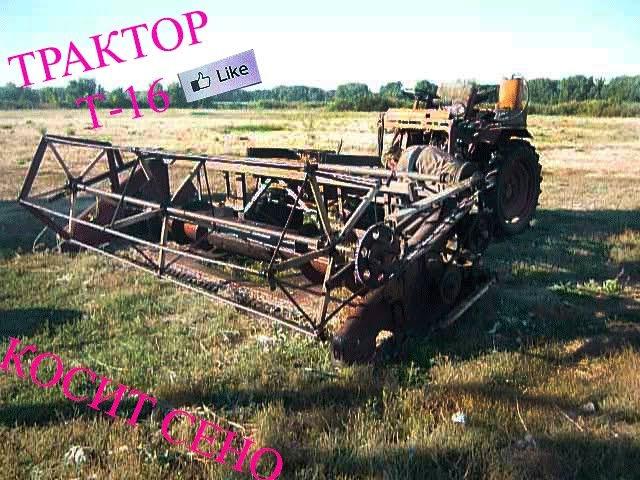 Трактор Т16 косит сено.