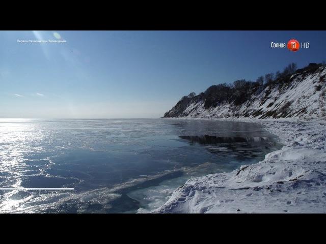 28.02.2018 57-летнего жителя Северо-Курильска будут судить за убийство