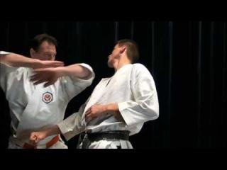 Koryu Karate Jutsu Bunkai - White Crane