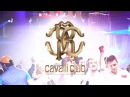 Cavalli Club Dubai, Restaurant Lounge x Dubai's 1 Luxury Venue