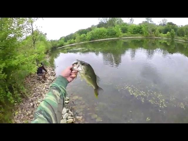 Field Testing G.Loomis E6X Shimano Curado - Catching Largemouth Bass