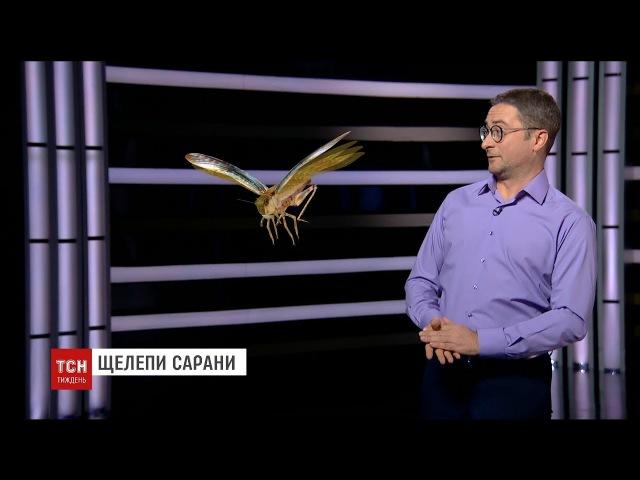 Гонорари для Олімпійців, звільнення Насірова, капці-самоходи – найцікавіші події тижня