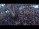 Охота 143 разведка на бобра