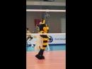 Вдохни позитива от танцующей пчелки
