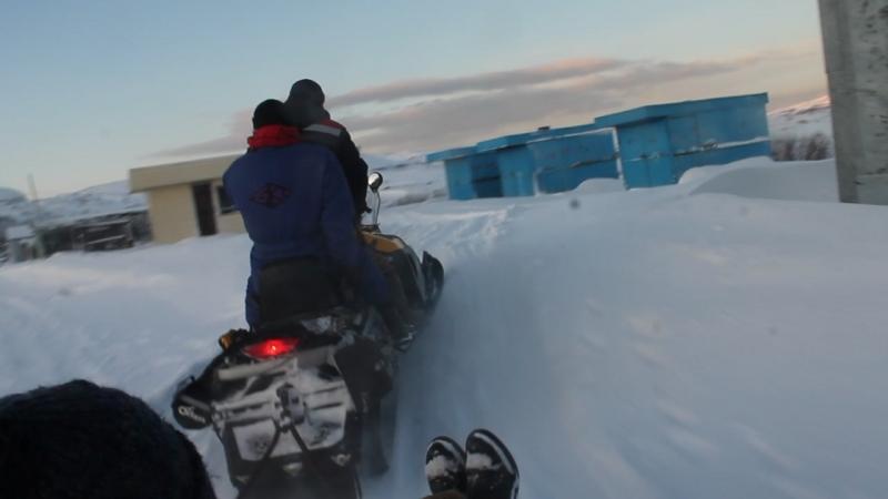 Катание на санях снегоходов Териберка Мурманская область