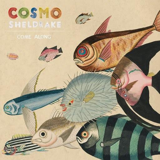 Cosmo Sheldrake альбом Come Along (Edit)
