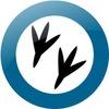 Рингтоны, картинки, приложения андроид | Solovey