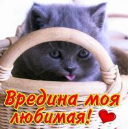 люблю тебя)))
