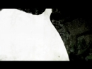 Fjäder - Vingar [SE002] [720p]