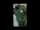 Бумбокс в армии