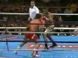 29. Рой Джонс vs Винни Пациенца (24 июня 1995 г.)