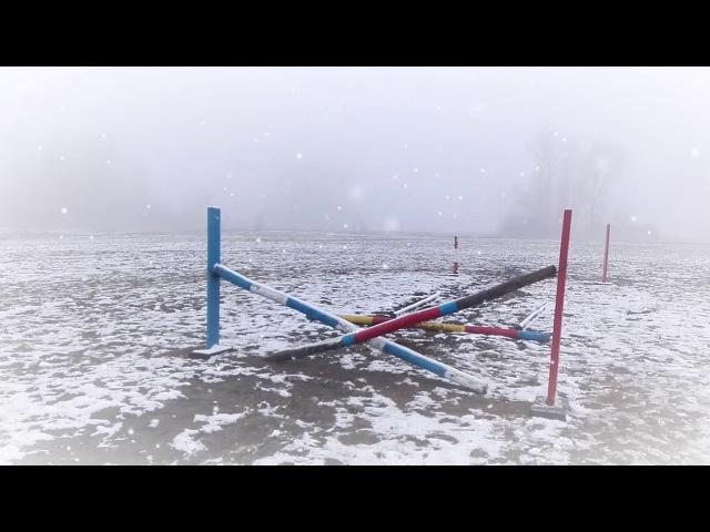 Конно-спортивный лагерь Ветер перемен Зимний тур2018