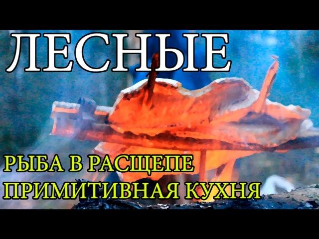 Дикая кухня - ЖАРЕНАЯ ЩУКА НА ОГНЕ В РАСЩЕПЕ | Cooking Fish Bushcraft Style lbrfz re[yz - ;fhtyfz oerf yf juyt d hfcotgt | cooki