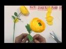 How To Make Paper Flowers Ranunculus Paper Flowers Crepe DIY Creative Idea