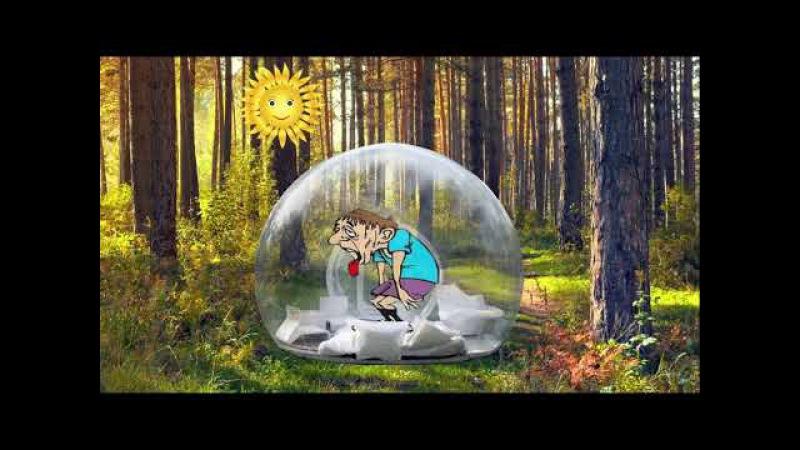 Hebergement insolite, quel type de bulle gonflable me faut il ?