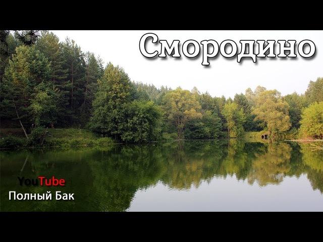 Смородино: озёра, родники, дикие птицы, водопад, лес, валуны